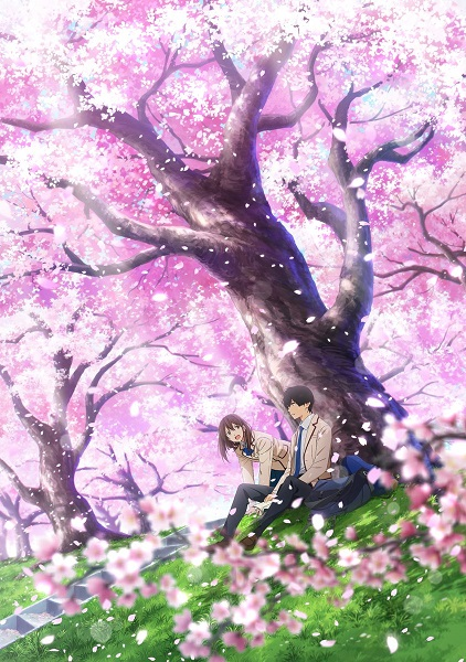 Kimi no Suizou wo Tabetai (Movie) - I want to eat your pancreas,KimiSui, Let Me Eat Your Pancreas, Tớ muốn ăn tuỵ của cậu